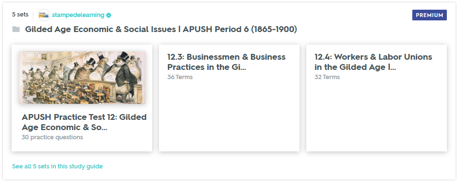 Gilded Age Economic & Social Issues - APUSH Period 6 Study Guide & Practice Test on Quizlet by Stampede Learning Systems